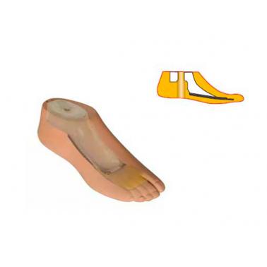 Модель 545 - женский протез неги типа SACH